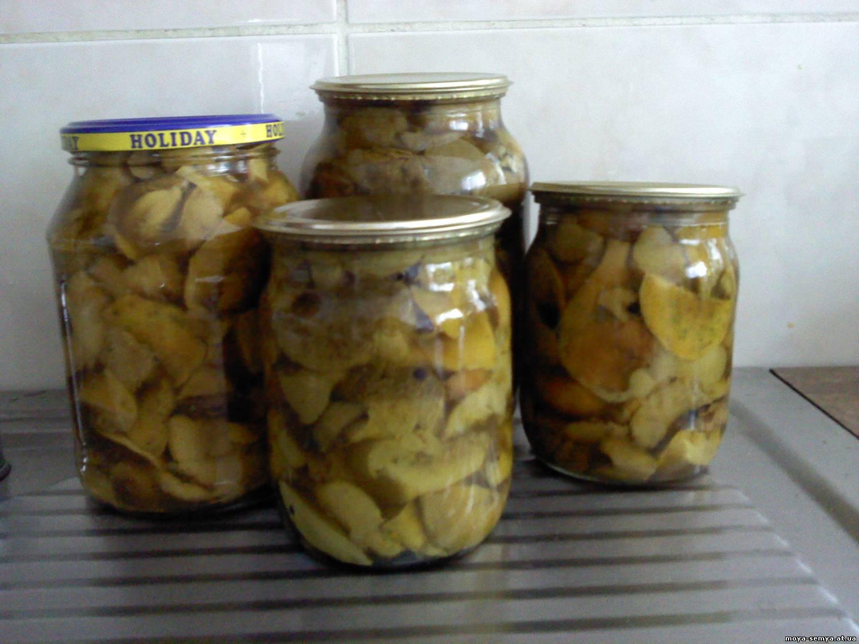 Рецепт маринованных грибов рядовок